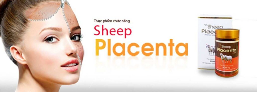 banner sheep placenta